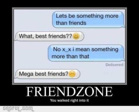 friend-zonee